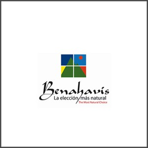 Logo-Ayuntamiento-Benahavis-300x300 Mantenimiento a Empresas