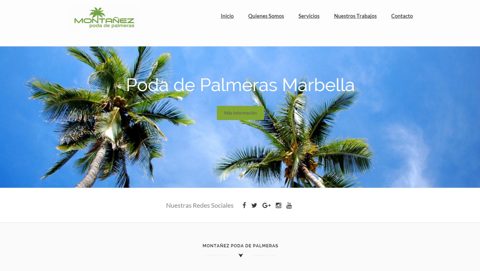 Web_Poda_de_Palmeras_Marbella-1 WEB Desing